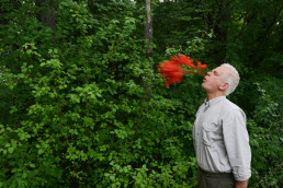 Andy Goldsworthy. Poppy spits. Digne-les-Bains, France. 10 June 2015 © Courtesy of Andy Goldsworthy and Slowtrack, Madrid